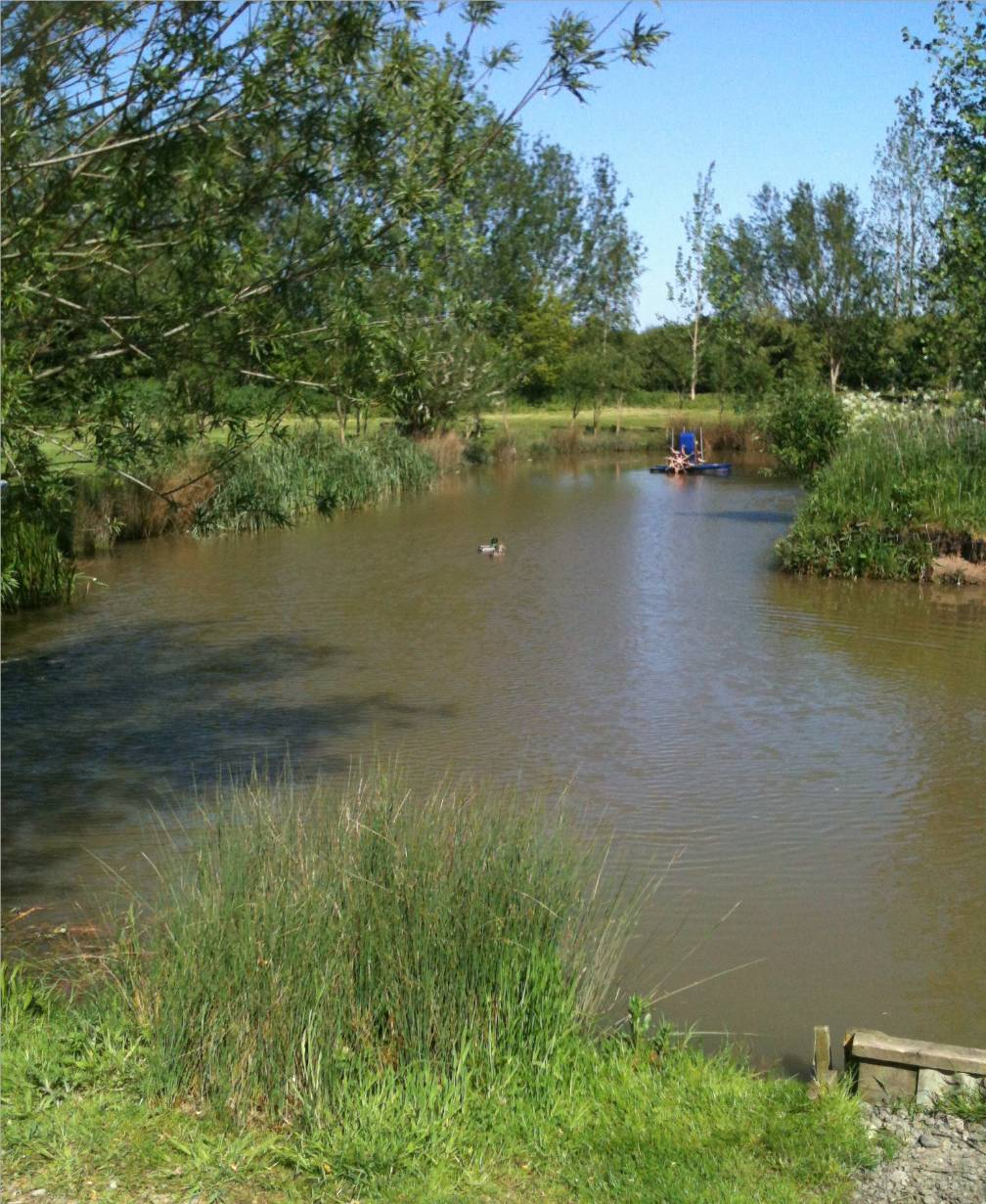 Tollerton pictures green wood parks for Stocked fishing ponds